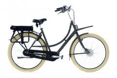 Jongerius Strong E-bike Lady